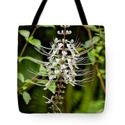 Cat's Whiiskers Tote Bag