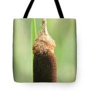 Cattail Face Tote Bag