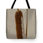 Cattail Tote Bag