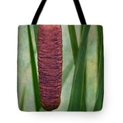 Cattail With Texture Tote Bag