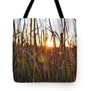 Cattails And Reeds - West Virginia Tote Bag