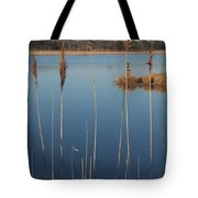 Cattails Cape May Point Nj Tote Bag
