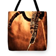 Cattails On Fire Tote Bag