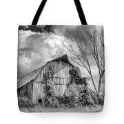Cattaraugus County Barn 6160b Tote Bag
