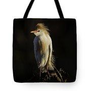 Cattle Egret On Limb Tote Bag