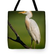 Cattle Egret On Stick Tote Bag