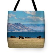 Cattle Grazing At Hawea Lake In Southern Alps In New Zealand Tote Bag