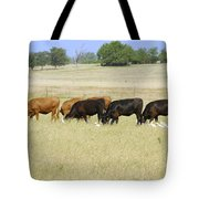 Cattle Grazing Tote Bag