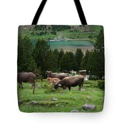 Cattle Grazing In The Pyrenees Tote Bag