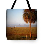 Cattle Grazing On Foggy Morning 1 Tote Bag