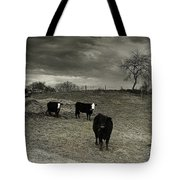 Cattle In The Winter Pasture Series Image 2 Tote Bag