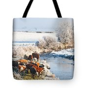 Cattle In Winter Tote Bag