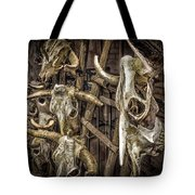 Cattle Skulls On Display In Santa Fe Tote Bag