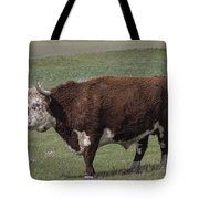 Cattle With Horns Full Body Portrait Tote Bag