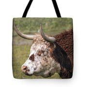 Cattle With Horns Side Portrait Tote Bag