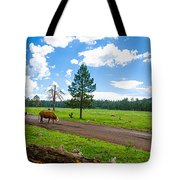 Cattles Roaming Through Hawley Lake Arizona Tote Bag