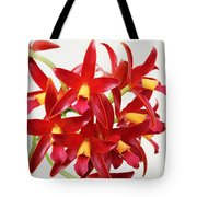 Cattleya Chocolate Drop Kodama Tote Bag