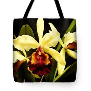 Cattleya Too Tote Bag