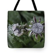 Caught Cold Tote Bag