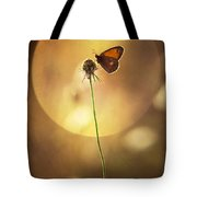 Caught In The Sun Tote Bag