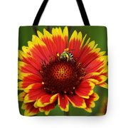Caught Snacking Tote Bag