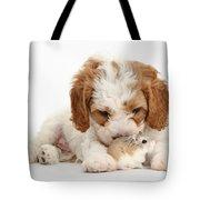Cavapoo Puppy And Roborovski Hamster Tote Bag