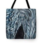 Cave 2 Tote Bag