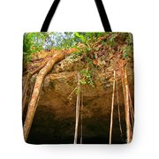 Cave Opening Tote Bag