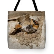 Cave Swallows Tote Bag