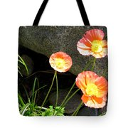 Cavy Poppies Tote Bag