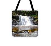 Cayuga Falls Tote Bag