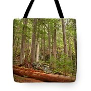 Cedar Logs At Garibaldi Tote Bag