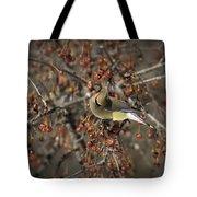 Cedar Waxwing Eating Berries 5 Tote Bag
