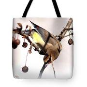 Cedar Waxwing - Img_9835-7x5 Tote Bag
