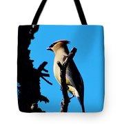 Cedar Waxwing In Tree 030515aaa Tote Bag