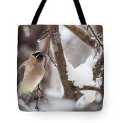 Cedar Waxwing In Winter Tote Bag