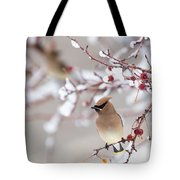 Cedar Waxwing Tote Bag by Michael Chatt