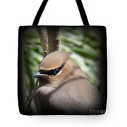 Cedar Waxwing Profile Tote Bag