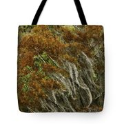 Cedars In The Fall Tote Bag