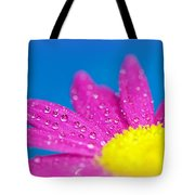 Celebration A Cacophony Of Colour Tote Bag