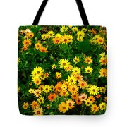 Celebration Of Yellows And Oranges Study 3 Tote Bag