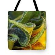 Celebration Sunflower Tote Bag