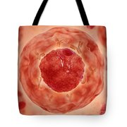 Cell Nucleus With Chromosome Tote Bag