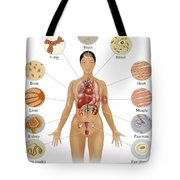 Cells Of The Body Tote Bag