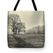 Cemetery Trees In The Fog E185 Tote Bag