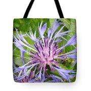 Centaurea Montana Blue Flower Tote Bag