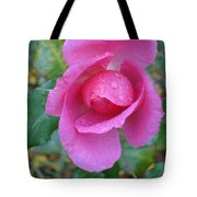 Center Stage Tote Bag
