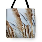 Central Coast Pampas Grass II Tote Bag