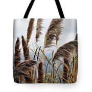Central Coast Pampas Grass Tote Bag