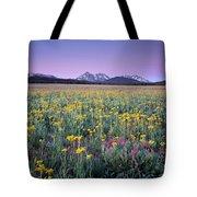 Central Idaho Color Tote Bag
